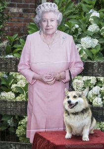 A Royal Presence